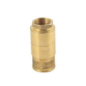 11 Forged Brass Foot Valve
