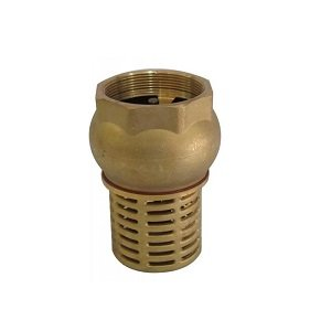 Industrial Brass Foot Valve 1